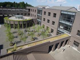 校舎4階から見下ろした中庭