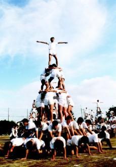 春高名物・組体操のピラミッド