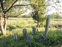 延命院の共同墓地跡