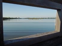 野鳥観察台から見る谷中湖