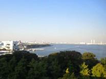 眼下に広がる横浜港