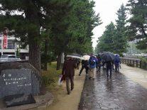草加松原遊歩道を歩く参加者