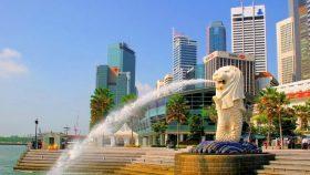 シンガポールで待望の春高OB交流会